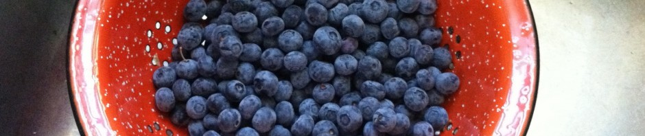Blueberry time in Washington!